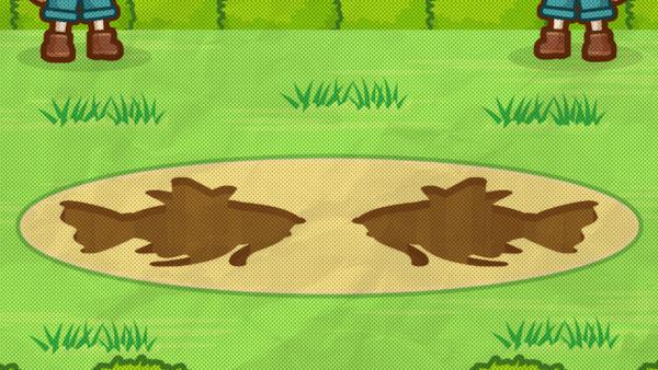 Splash-Magikarp-Ann-Pokemon-Company[1].jpg