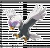 pokemon_regional_b_1[1].png
