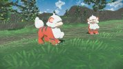pokemon_regional_g_4[1].jpg